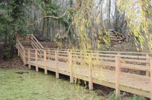 Pond-Hallwood-park-0031