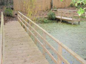 Pond-Hallwood-park-0045